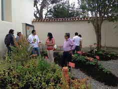 """En Villa de Leyva exhibición """"Antídoto para el olvido: Redescubriendo nuestras plantas"""