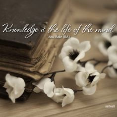 Abu Bakr as-Siddiq quote: Knowledge is the life of the mind: Knowledge is the life of the mind. (Abu Bakr may Allah be pleased with him)