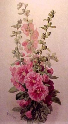 ♥   Hollyhocks.  We use to have the doubled hollyhocks and as a small child I would sell seed from them.