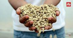 Er zit meer in je koffie: Het vakmanschap van de mensen die de koffie maken en hun verhalen