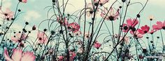 Field of flowers Facebook Cover - CoverJunction