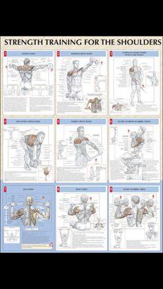 Strengthening shoulders.