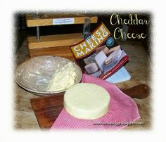 Cheesemaking Help, News and Information: Cheddar with Marci Blubaugh at Amazing Graze