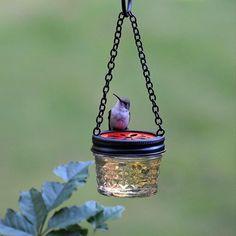 jelly jar hummingbird feeder #hangingbirdbaths #pedestalbirdbaths #birdbathdrippers #birdbathmisters #wildbirdscoop