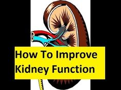 How To Improve Kidney Function - Kidney Disease Treatment