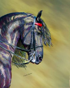 Coloured Black Horse by Claudia Butler