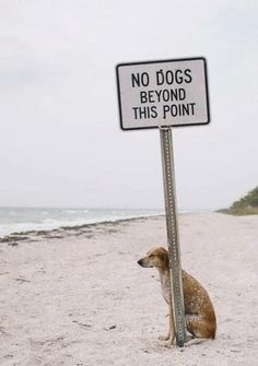 What a rebel!