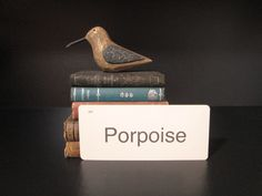 Vintage Flash Card Porpoise by GirlPickers on Etsy