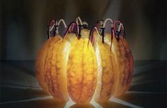 El poder eléctrico de una Naranja