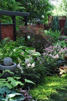 Three Dogs in a Garden: A Garden in the Shade (Part 2)