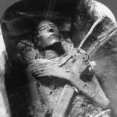 Mummified remains of Pharaoh Seti I, Dynasty, one of the best-preserved Egyptian mummies, as photographed by Emil Brugsch Seti I was the father of Ramses the Great (Rameses II). He was the father of Ramses the Great (Rameses II). Ancient Mysteries, Ancient Artifacts, Ancient Egypt, Ancient History, Arte Tribal, Egyptian Mummies, Egyptian Art, Egyptian Isis, Architecture Antique