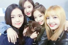BLACKPINK in your area !