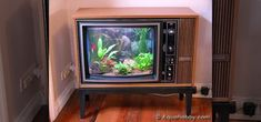 How To Turn An Old Tv Into A Sweet Fish Tank!