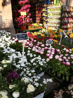 Ahhhhh...Paris markets..... :)