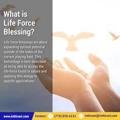 What is Life Force Blessing? What Is Life About, Blessings, Blessed, How To Apply