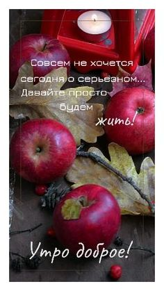 Good Morning, Apple, Fruit, Cards, Quotes, Projects, Buen Dia, Apple Fruit, Bonjour
