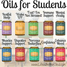 Back to School Essentials The Best Essential Oils For Students Also visit www.theoildropper.com
