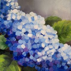 hydrangeas - Google Search