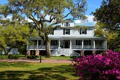 Chicora Wood Plantation, Georgetown South Carolina. In 1850 it was home-base for Gov. Robert F. Allston.