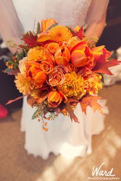 Orange!!  By Ward Photography