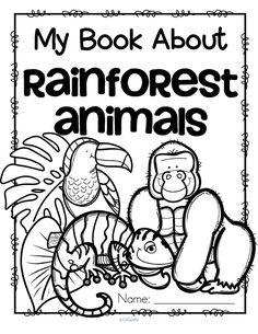 Rainforest Worksheets for Kindergarten. 20 Rainforest Worksheets for Kindergarten. Rainforest theme Activities and Printables for Preschool Rainforest Preschool, Rainforest Classroom, Rainforest Crafts, Preschool Jungle, Rainforest Habitat, Rainforest Theme, Rainforest Animals For Kids, African Rainforest, Rainforest Project