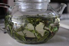 Green tea stretching
