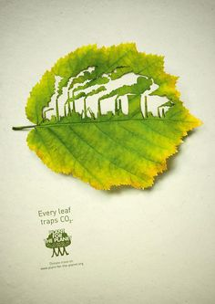 Plant for the Planet ad #advertisement