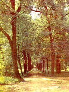'Im Park Schloss Belvedere Weimar' von Dirk h. Wendt bei artflakes.com als Poster oder Kunstdruck $18.03