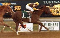 Prairie Bayou(1990)Little Missouri- Whiffling By Wavering Monarch. 3x4 To Bold Ruler, 5x5 To Tom Fool. 12 Starts 7 Wins 3 Seconds. $1,450,621. Won Preakness S(G1), Blue Grass S(G2), Jim Beam S(G2), 2nd Ky Derby(G1). Euthanized After Breaking Down In The Belmont Stakes In 1993.: