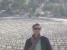 Viñedos Vega Sicilia.