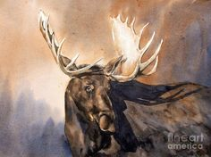 Bull Moose Painting by Gary Bailey - Bull Moose Fine Art Prints and Posters for Sale