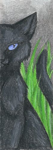 Crowfeather Bookmark by CaptainMorwen.deviantart.com on @deviantART