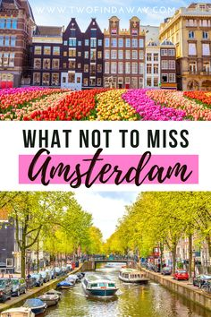 European Travel Tips, European Vacation, Europe Travel Guide, Europe Destinations, Amsterdam What To Do, Visit Amsterdam, Amsterdam Trip, Amsterdam Attractions, Amsterdam Itinerary