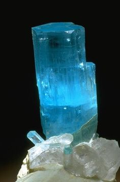 Beryl crystals on Microcline / National Mineral Collection / photo by Chip Clark