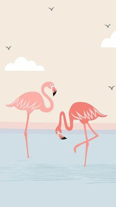 New party background iphone art prints Ideas Tumblr Wallpaper, Whats Wallpaper, Wallpaper Pastel, Wallpapers Tumblr, Flamingo Wallpaper, Flamingo Art, Wallpaper Iphone Cute, Screen Wallpaper, Mobile Wallpaper