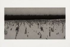 Corn, Effect of Snow, Bundysburg, 2013, charcoal and pastel on paper, 10 x 19 3/8 inches Anthony Mitri, forum gallery