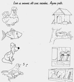Farm Animals, Wild Animals, Preschool Activities, Diagram, Author, 1, Children's Literature, Kids Reading, Writers