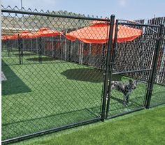 1000 images about great places for synthetic grass on for Dog kennel layouts