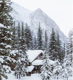The perfect winter getaway—snow-covered and magical!