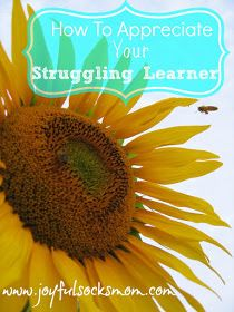 Joyful Socks Mom: How To Appreciate Your Struggling Learner .... After flipping-out & completely losing it over my struggling learners, there is peace. Here is the 2nd installment of encouragement ----> Getting Out of the Struggling Learner Wilderness #homeschool #ihsnet