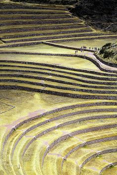 Peru. Moray, Inca Terraces, Cusco