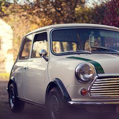 a classic Mini Cooper in beautiful condition.