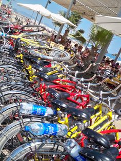 Fat Tire Bike tour (American Company) in Barcelona is a great way to see the city!