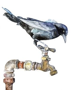 "Blackbird Painting - Print from Original Watercolor Painting, ""The Thirsty Bird"", Songbird, Spigot, Faucet, Bird Prints door TheColorfulCatStudio op Etsy https://www.etsy.com/nl/listing/227093541/blackbird-painting-print-from-original"