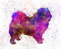 Chow-Chow 01 in watercolor Fine Art Print by AnimalArtPosters