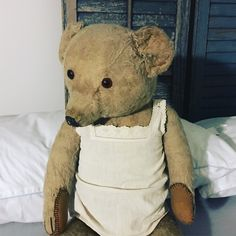 Teddy Bears, Shabby Chic, Animals, Chic, Animales, Animaux, Teddy Bear, Animal, Shabby Chic Style