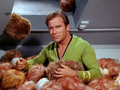 """Kirk (William Shatner) - Star Trek: The Original Series """"The Trouble with Tribbles"""" (First Broadcast: December Star Trek 1966, Star Trek Tv, Star Wars, Leonard Nimoy, William Shatner, Science Fiction, Canal 13, Star Trek Episodes, Star Trek Original Series"""