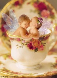 Fairies in a tea cup. Like to pin only art that is signed. Some is not and I do not want to take away from a artist by posting it so please watch for signed art only... CTH
