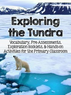 Tundra Exploration: A Literacy Based Habitat Study by Catherine Reed - The Brown Bag Teacher Learning Log, Second Grade, Grade 2, Winter Wonderland Theme, Animal Adaptations, Animal Art Projects, Animal Habitats, Arctic Animals, Preschool Science