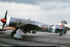 Hawker Tempest, member of the RAF in Air Force Aircraft, Ww2 Aircraft, Military Aircraft, Spitfire Airplane, Colorized History, Hawker Tempest, Fighting Plane, Hawker Typhoon, Hawker Hurricane